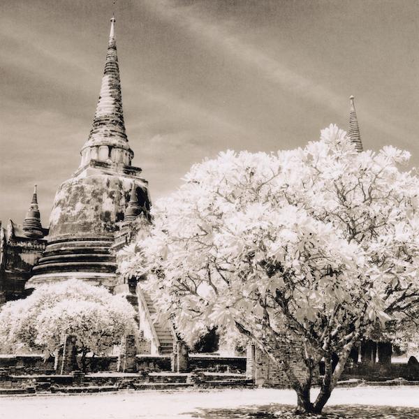ayutthaya2008_emaks