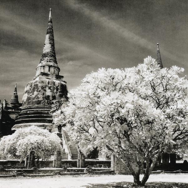 ayutthaya2008_emaks_selenium