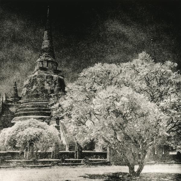 ayutthaya2008_fomabrom_selenium